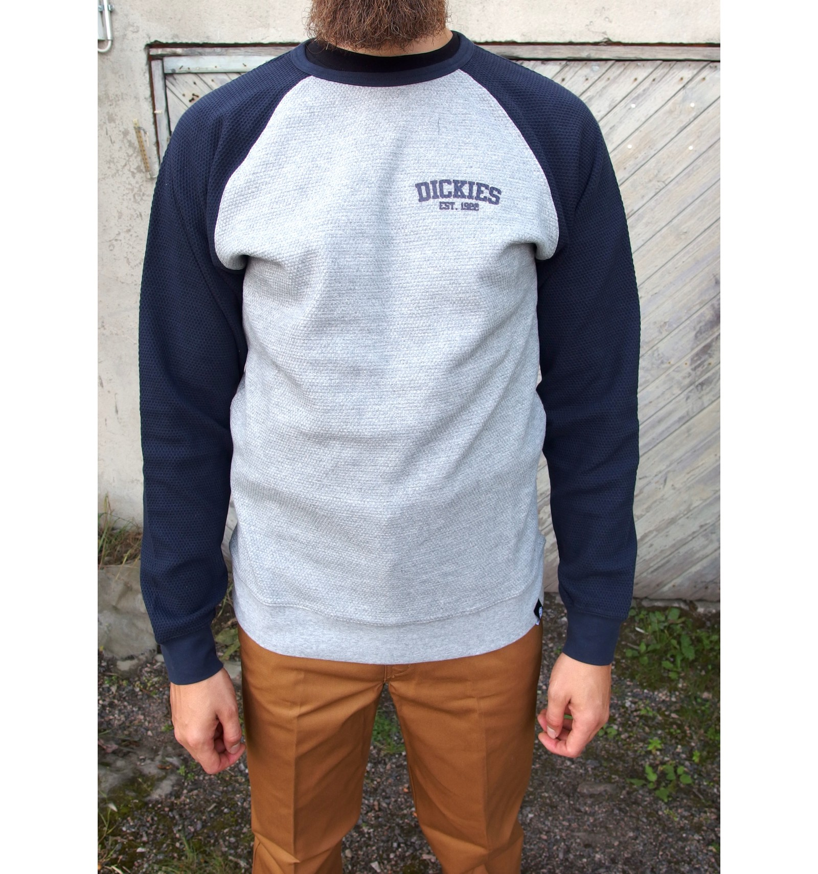 Dickies collegepaita