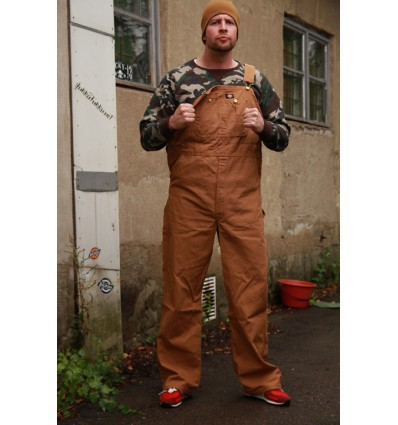 Dickies lappuhaalari, brown duck